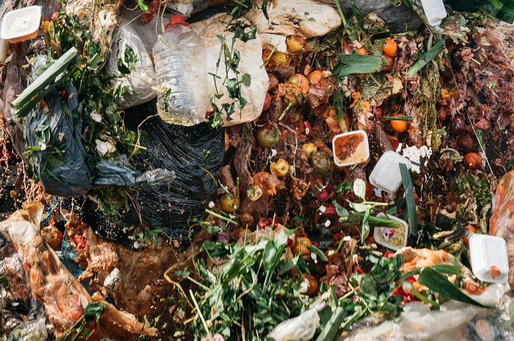 Moulinot, déchets alimentaires